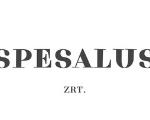 Bútor fóliázás referencia - Spesalus Zrt